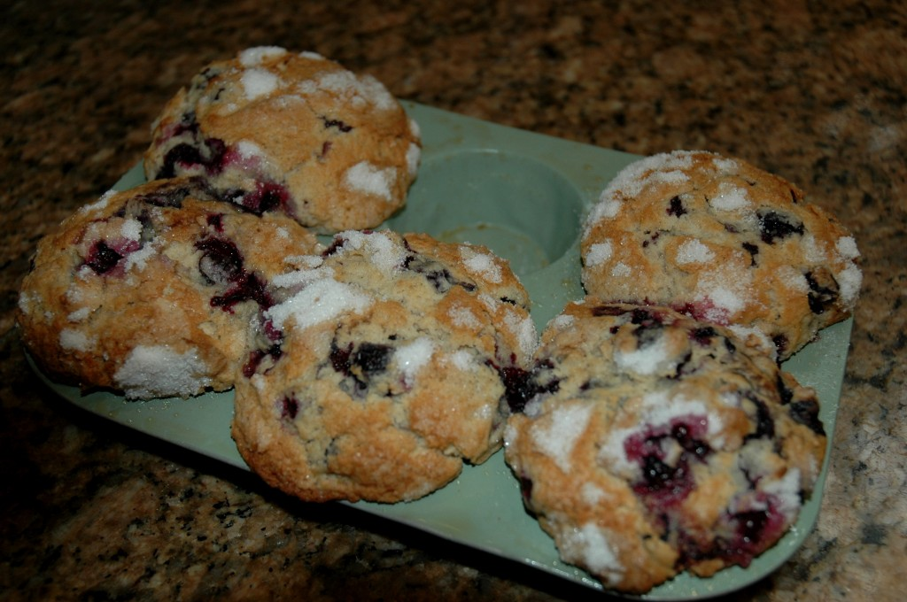 1/2 Bath of Blueberry Muffins