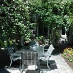 may-gardens-cecile-brunner