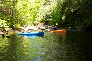 Smoky Mountain Kayaking on Abrams Creek