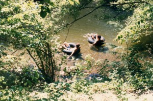 Tubing the Little River in Townsend, Tennessee