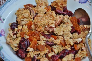 Vegan Pecan and Dried Fruit Homemade Granola