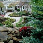 backyard-rhodos-and-zinnas-3-3008x2000