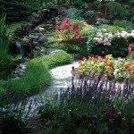 may-gardens-may-night-salv