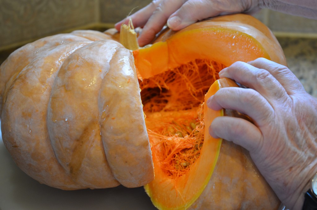Winter Squash, Pumpkin